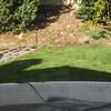 The back yard in San Diego