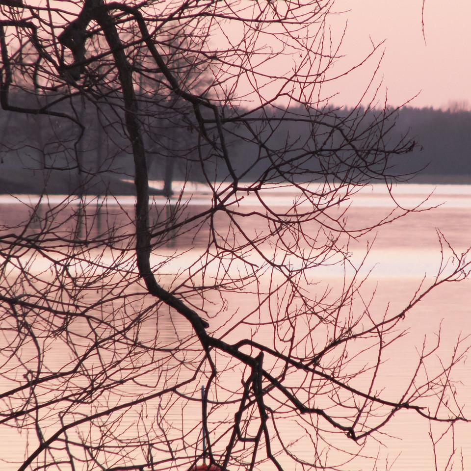 Norra Strandvägen/Lurudden. View over Västerviken. 2007 Mar 28 @ 19:05
