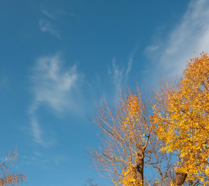 Strängnäs. Sturegatan. 2008 Oct 17 @ 16:26