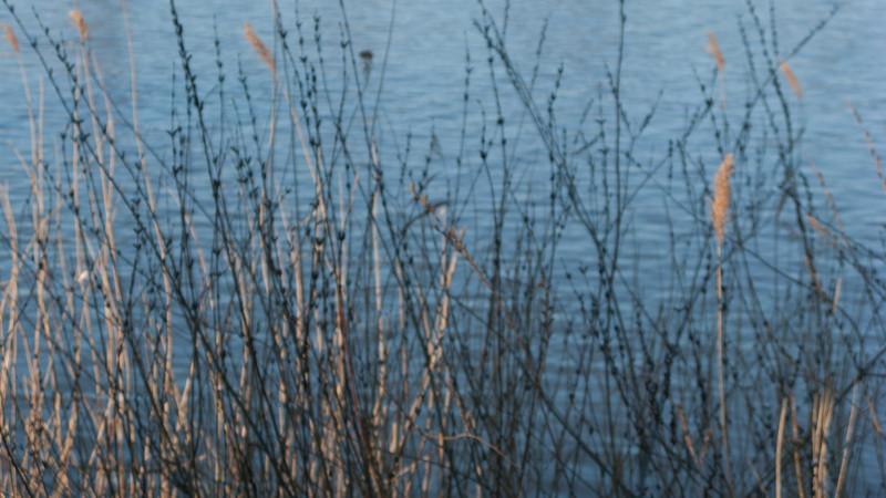 Strängnäs. 2008 April 21 @ 18:21
