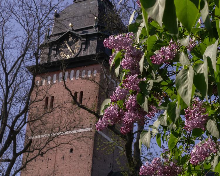 Strängnäs domkyrka (cathedral). 2007 May 20 @ 17:00