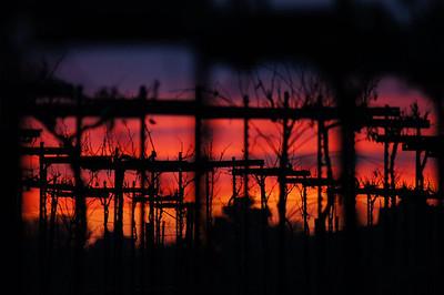 From my backyard, Mogul Vineyard sunset