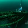 Newell Eddy Shipwreck bow