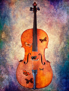 The Magic Cello