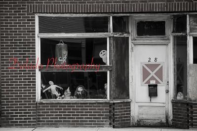Odd creatures in Waterloo, N.Y.