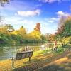Peaceful Autumn Riverside