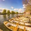 Shakespeare Themed Boats