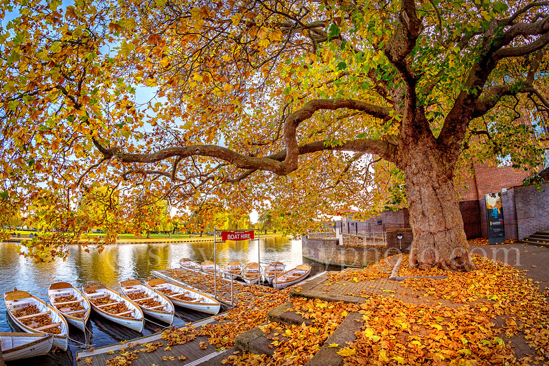 Autumn By The Riverside 2016
