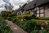 Anne-Hathaway-cottage--3,-Stratford upon-Avon