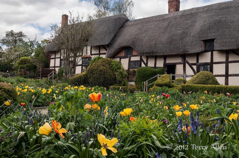 Anne-Hathaway-cottage-2,-Stratford-upon-Avon<br /> <br /> Anne Hathaway was Shakespeare's wife.