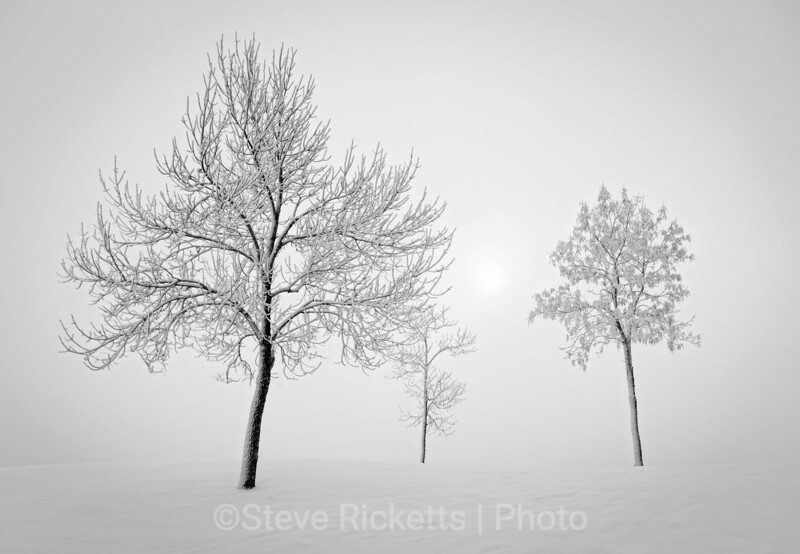 Morning hoarfrost