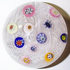 "DCP04729P21-1... Strathearn P21 Large Lace with eleven spaced millefiori canes, 3.1"" x 2.25"" and 19 ozs. Flat cut polished base. No label. Circa 1965 to 1978. Discontinued May 1, 1978. acquired 3-27-07."