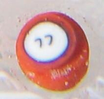 DCP1977-4070EIIR-2