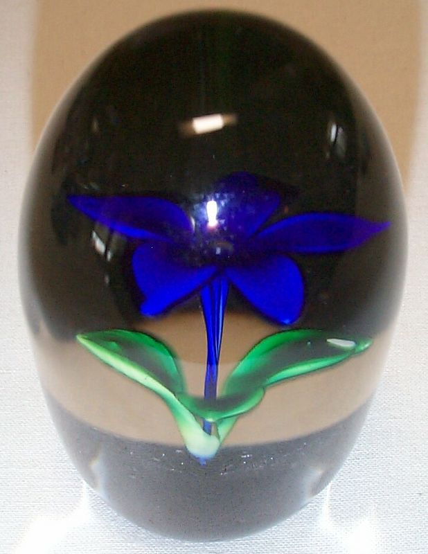 """DCP1974-4622P6-S74-GentianBlue...Strathearn P6 Upright Flower in Gentian Blue on a black ground, 3.7"""" x 2.25"""" and 18.5 ozs. Flat cut polished base. No label. Signed & Dated """"S74"""" cane on base. acquired 03-08-05."""