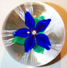 "DCP1978-4697D4-S78 Flwr Blue-1... Strathearn D4 'S78' magnum five petal flower over three green leaves sitting on five double twisted latticino strands, 3.7"" x 3.6"" and 43 ozs. Flat cut polished base. No label. Signed and dated 'S78' cane in center of flower. Discontinued 1 May 1978. acquired 1-30-06."