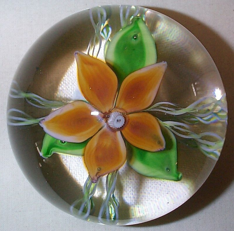 """DCP1967-4636D4 Orange Trial...Strathearn Trial Orange D4 weight with a """"67"""" center date cane. Typical five petals over three green leaves sitting over four double white and green twisted latticino strands 3.65"""" x 2.9"""" and 34 ozs.  Flat cut and polished base. No label. Signed & Dated """"67"""" in center cane and NO """"S"""" cane. Dave Moir informed me that after Vincent Ysart left Strathearn they made a few of these as an Experimental Trial to see what Designer Angus Sillars would agree to but he prefered the Turquoise, Madder and Gentian colors which became the standards for the Flower weights. The original color names were Turkis Blau, Dunkle Rosa and Dunkle Blau. The """"67"""" date cane now becomes a likely date for the beginning period of these D4's production until they were discontinued in May of 1978. The """"lampwork"""" petals were all made by Dave Moir, Jack Allen (while he was there) and Herbert Dreier and while Dave had a Ronson Burner Blow Lamp at home to experiment with as did Jack and probably Herbert, all of the Flower Petals and Leaves were made on site at Strathearn. Dave also stated that each of them made a slightly different petal. A clue perhaps to further individual D4 identification? This Orange color also looks very similiar to the Orange color used in the Vasart Period Flower weights. acquired 05-09-05."""
