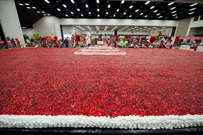 Strawberry Festival_2018_030