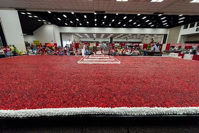 Strawberry Festival_2018_029