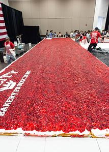 Strawberry Festival_2018_003