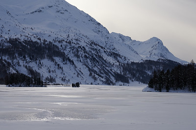Silsersee, Isola