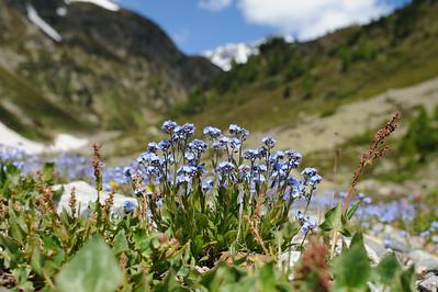 Val Susauna