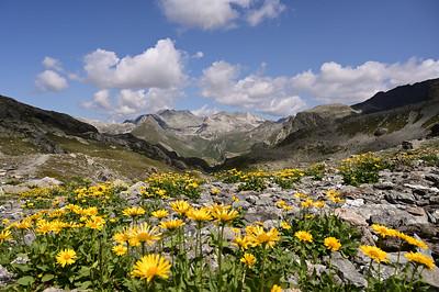 Grevasalvas, Val d'Agnel