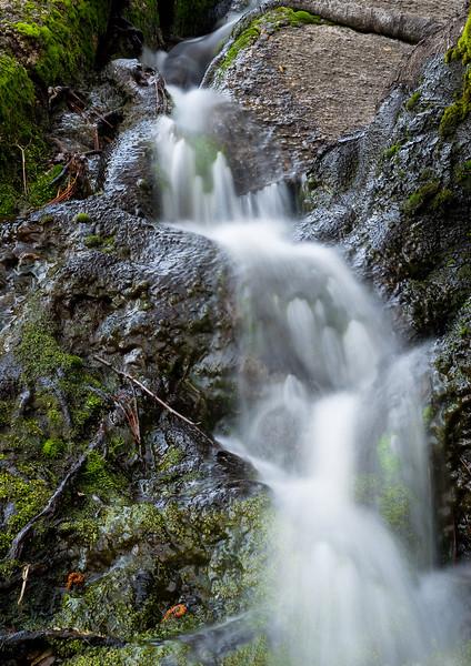 Mossy Fall-San Jacinto