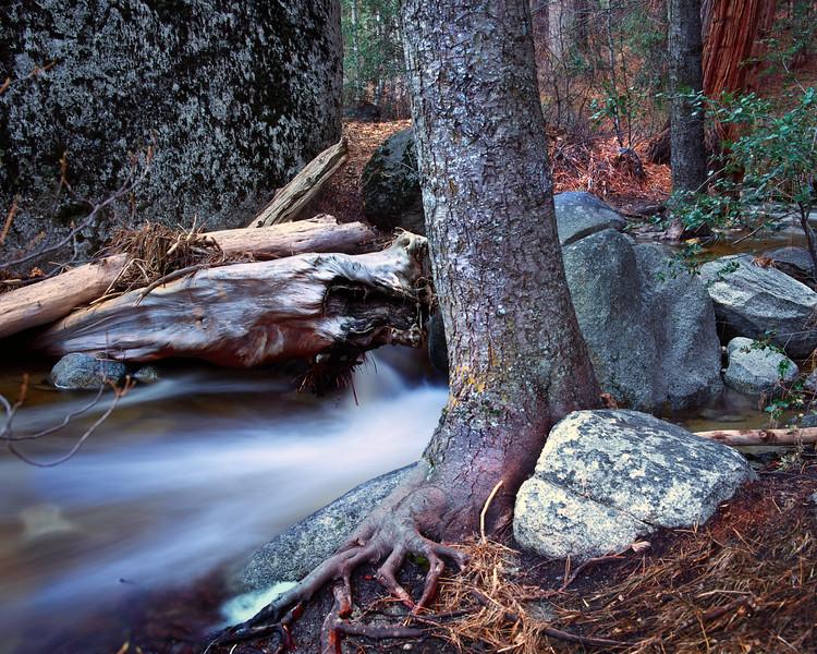 Fuller Creek