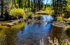 Jefferson Creek