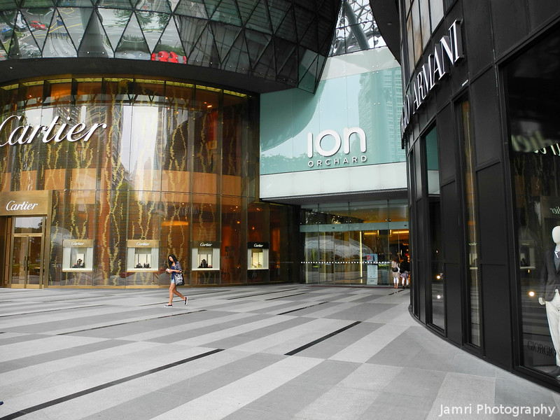 At the one of the entrances to ION Orchard.