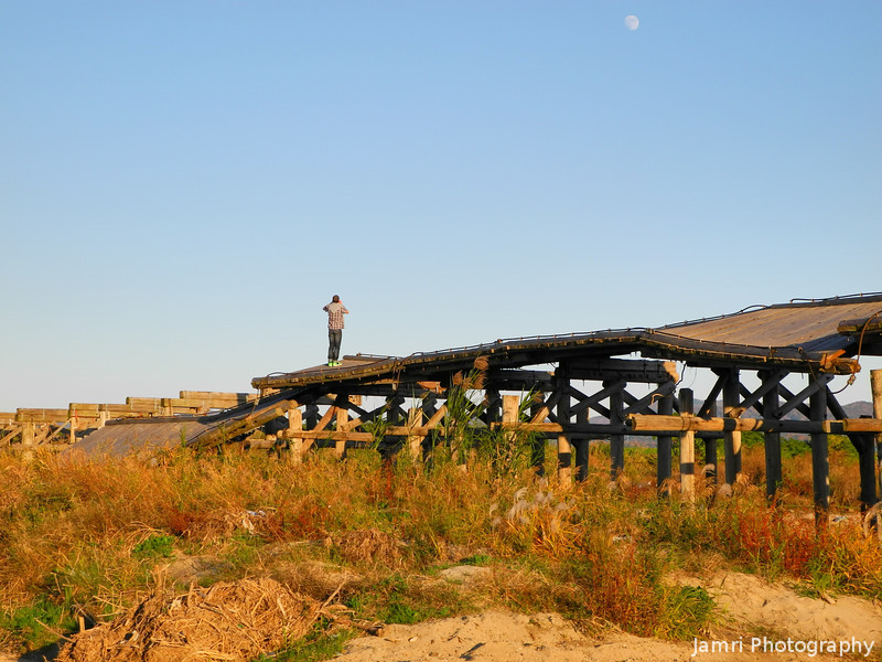 Standing on the broken bridge.<br /> The Kozuyabashi (the longest wooden bridge in Japan) in Yawata, Kyoto-fu still not repaired in November after it was severely damaged by a storm surge in the summer.