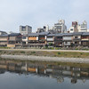 Along the Kamogawa