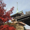 Gion Tower and Autumn Leaves