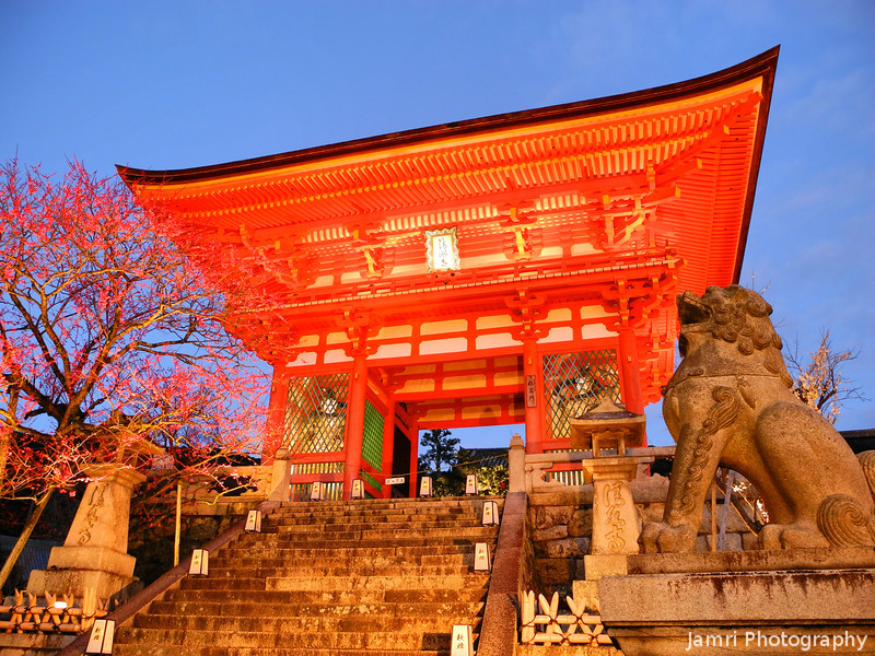 A Lion and the Gate.<br /> Of Kiyomizu Temple, during the 2012 Higashiyama Hanatouro.