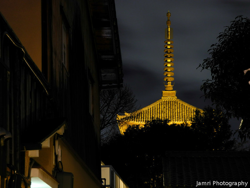 At the End of an Alley.<br /> A lit up pagoda for the 2012 Higashiyama Hanatouro.