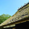 Close Up to a Thatched Roof.<br /> On another building nearby to the one which was being re-thatched.