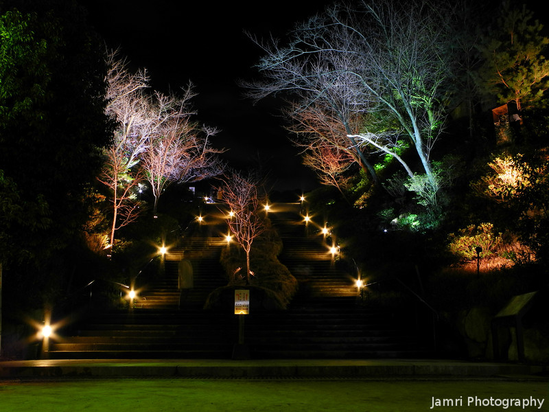 Lights on a Stairway.<br /> During the 2013 Higashiyama Hanatouro in Kyoto.