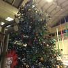 The Christmas Tree in Plaza Porta.