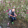 Jayden in a Cosmos Field.<br /> One of the first places I brought Jayden to after his arrival was a near by Cosmos Field.