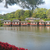 Across the Pond.<br /> Towards the traditional restaurant.<br /> At Nagaoka Tenmangu Shrine, Nagaokakyo, Kyoto-fu, Japan.