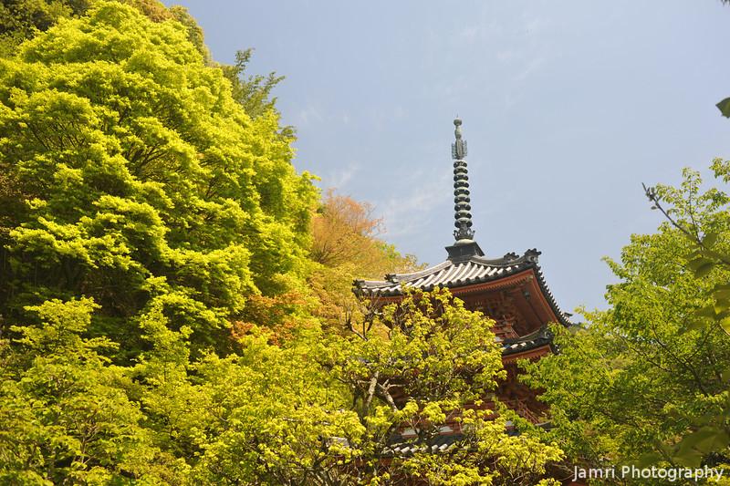 The Pagoda behind the trees.<br /> At Mimuroto-ji (a Buddhist Temple), in Uji city, Kyoto-fu, Japan.