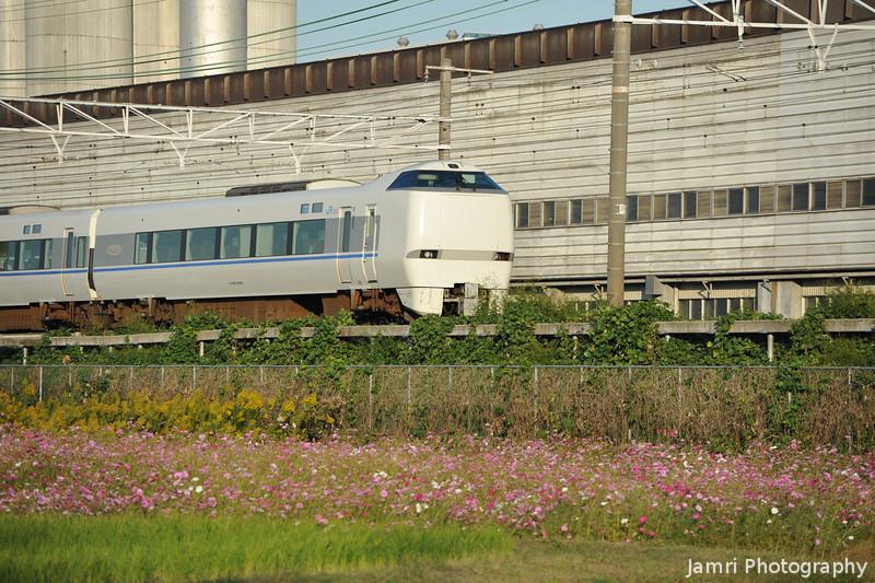 Thunderbird Train and Cosmos