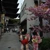 Kimonos and Yasaka Pagoda