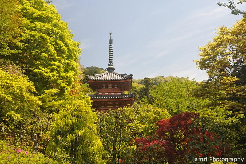 Pagoda and Spring Foliage.<br /> At Mimuroto-ji (a Buddhist Temple), in Uji city, Kyoto-fu, Japan.