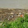 More Debris
