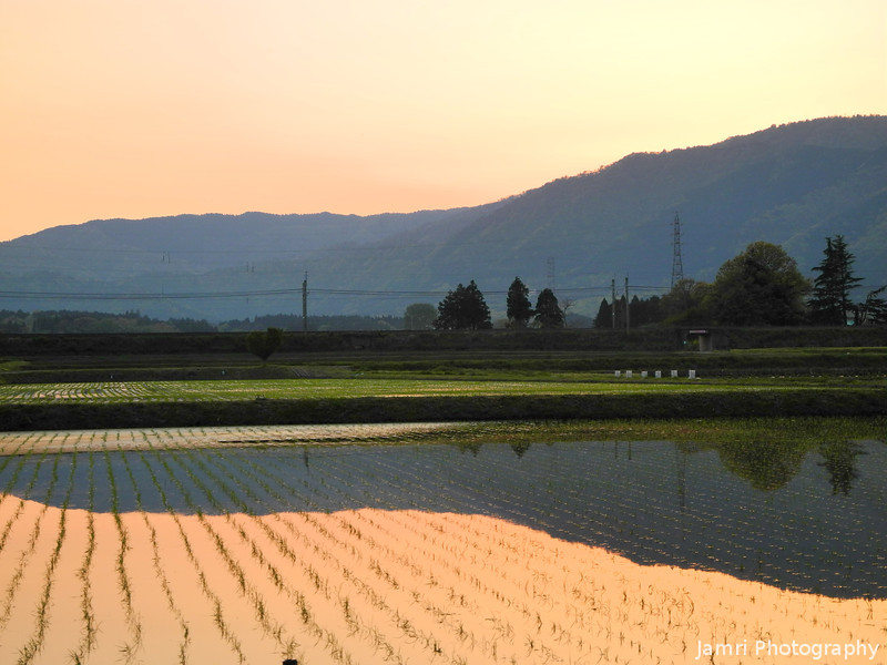 Towards the Mountains at Sunset.<br /> Omi-Imazu, Shiga-ken, Japan.