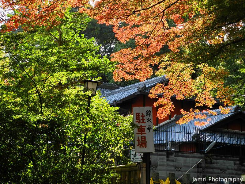A Sunny Autumn's Day.