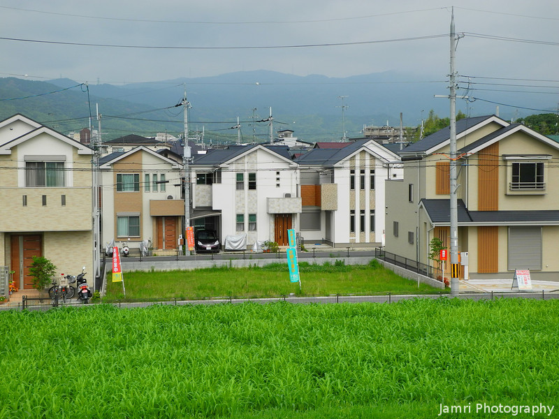 Summer Greenery and New Houses.<br /> In Nagaokakyo, Kyoto-fu, Japan.