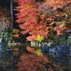Autumn Colour Refections