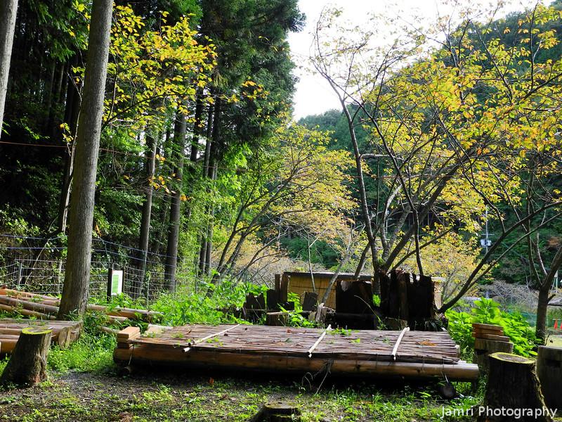 A Picnic Area.<br /> In the Nishiyama range, Takatsuki city, Osaka Prefecture.